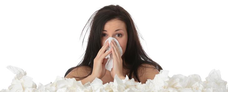 Allergia acaro allerigia acari allergia agli acari allergie respiratorie asma bioallergen - Acari nel letto ...