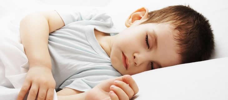 Allergia agli acari acari allergia allergia acari polvere bioallergen - Acari nel letto ...
